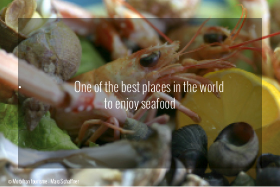 Brittany Travel Guide - Seafood