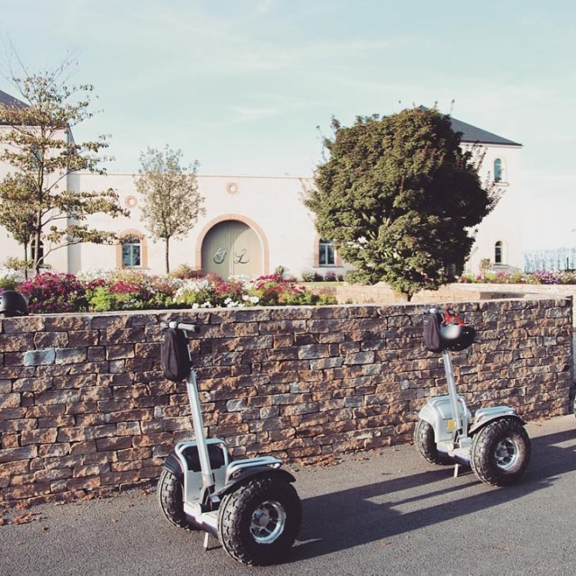 Touring the vineyard with a Segway is a fantastic fun