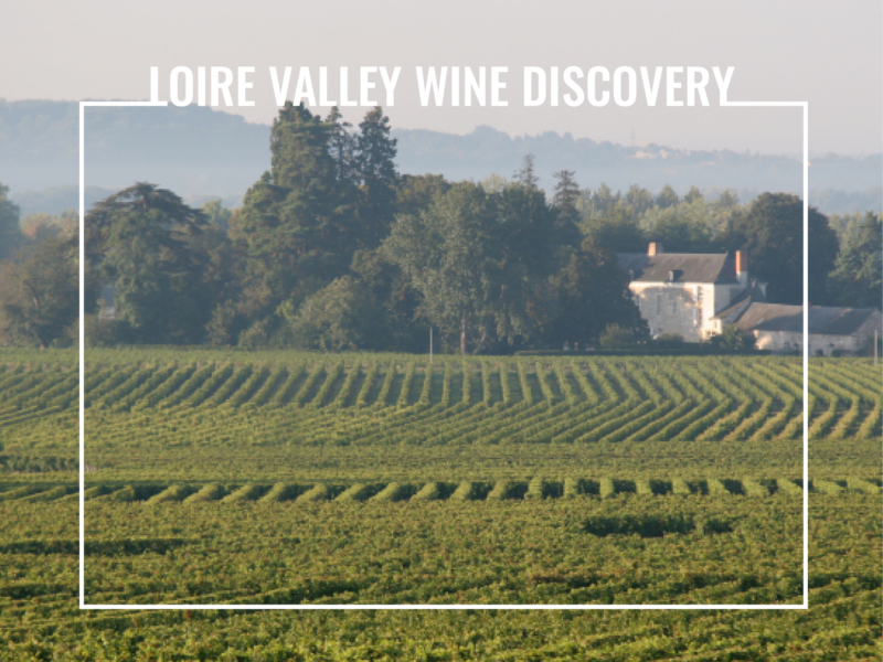 loire valley wine discovery