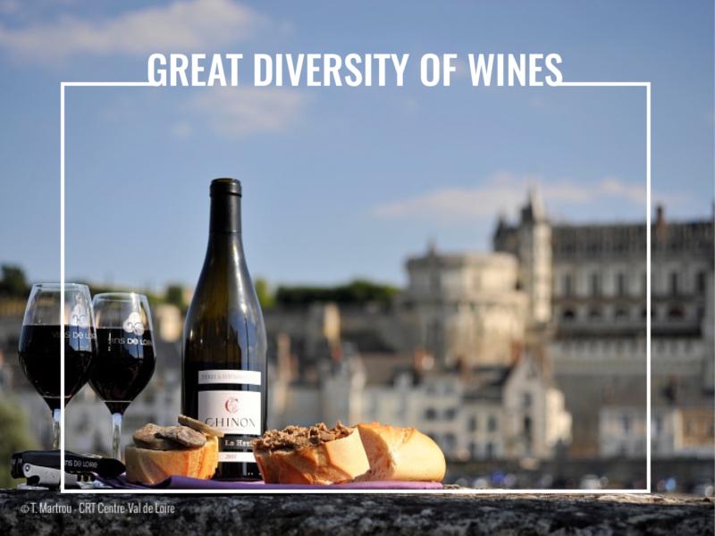 great diversity of wines
