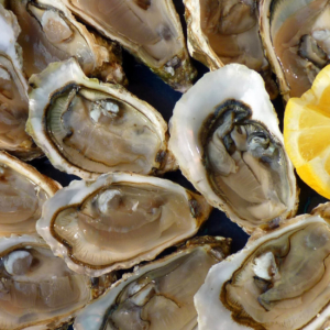 oyster brittany