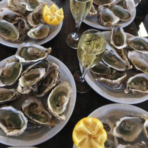 oyster loire boat croisiere