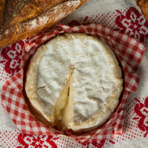 cheese normandy camembert gourmet tour excursion gourmande