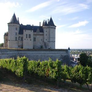 saumur chateau castle vie