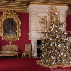 chenonceau christmas chateaux