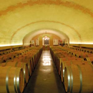 winery organic tour domaines viticoles biologiques unique loire valley