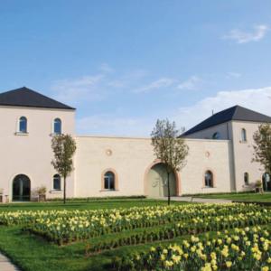 wine tour organic domaines viticoles biologiques sejour velo unique loire valley