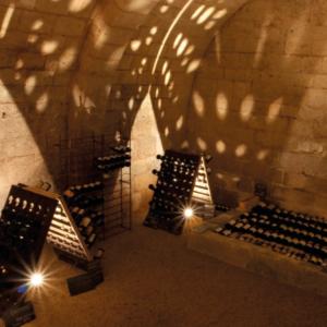 winery wine experience journee autour du vin