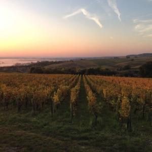 holidays sancerre wine vacances
